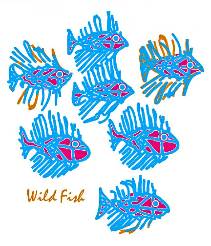 Wild Fish / one of many Variation's