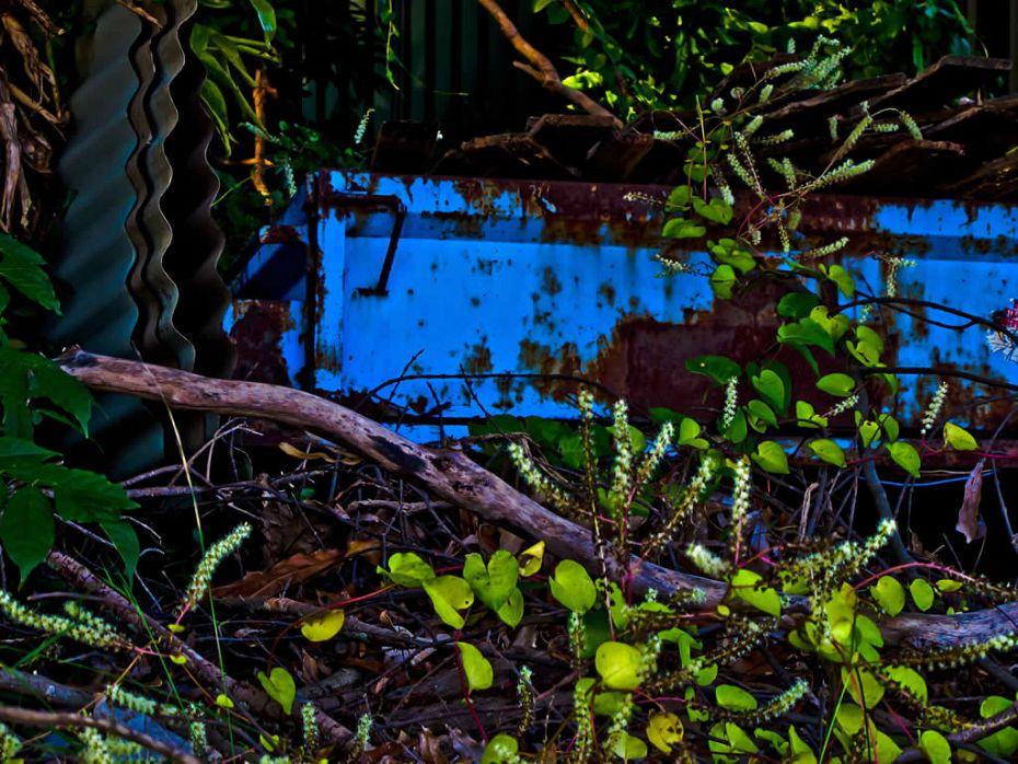 Blue Trailer Glenbrook Australia