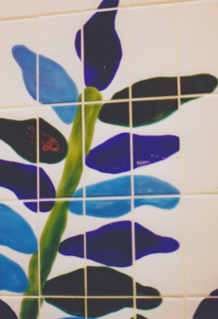 Mcwhiters Marketpalce / Hand Painted Glazed Tiles & Project Graphics
