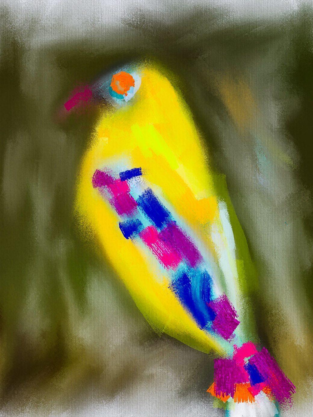 yellowbird 11-2015