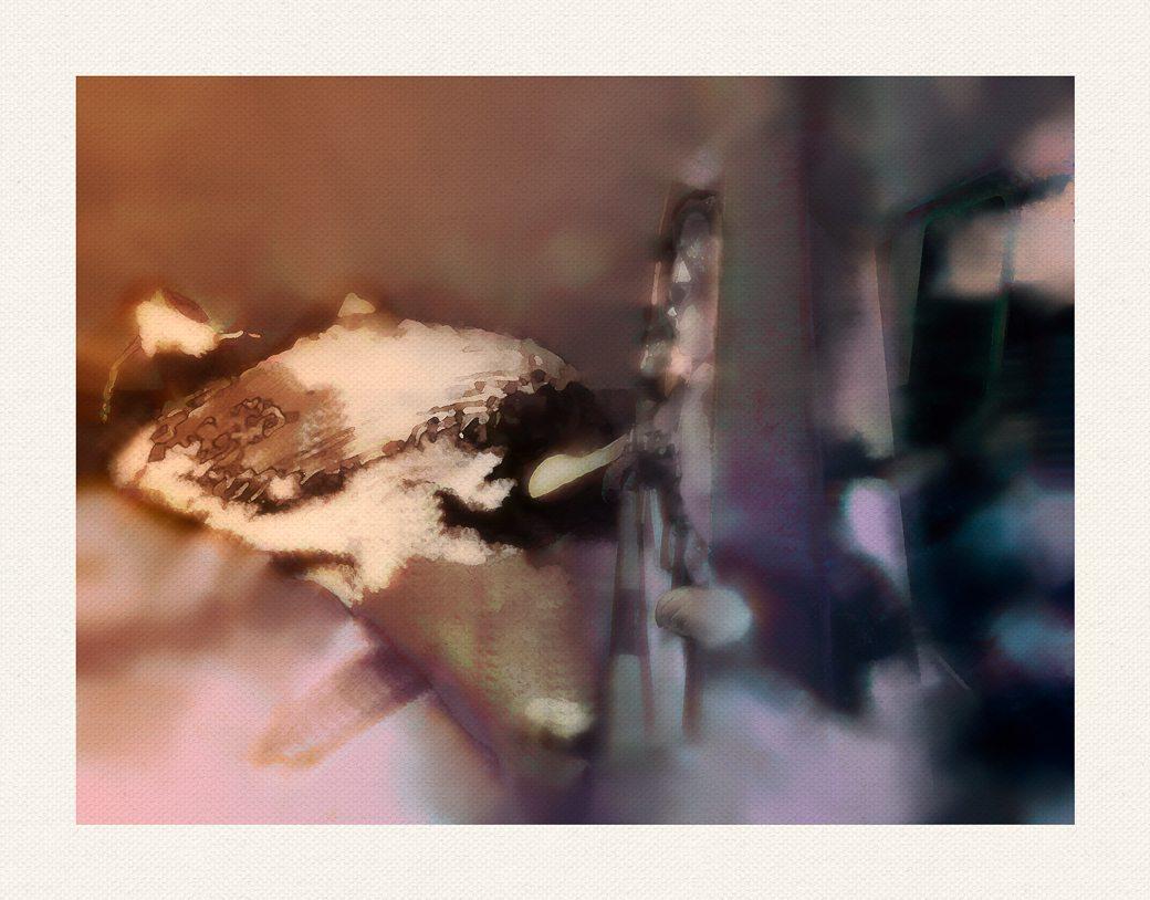 WhaleWatch7-24-2015