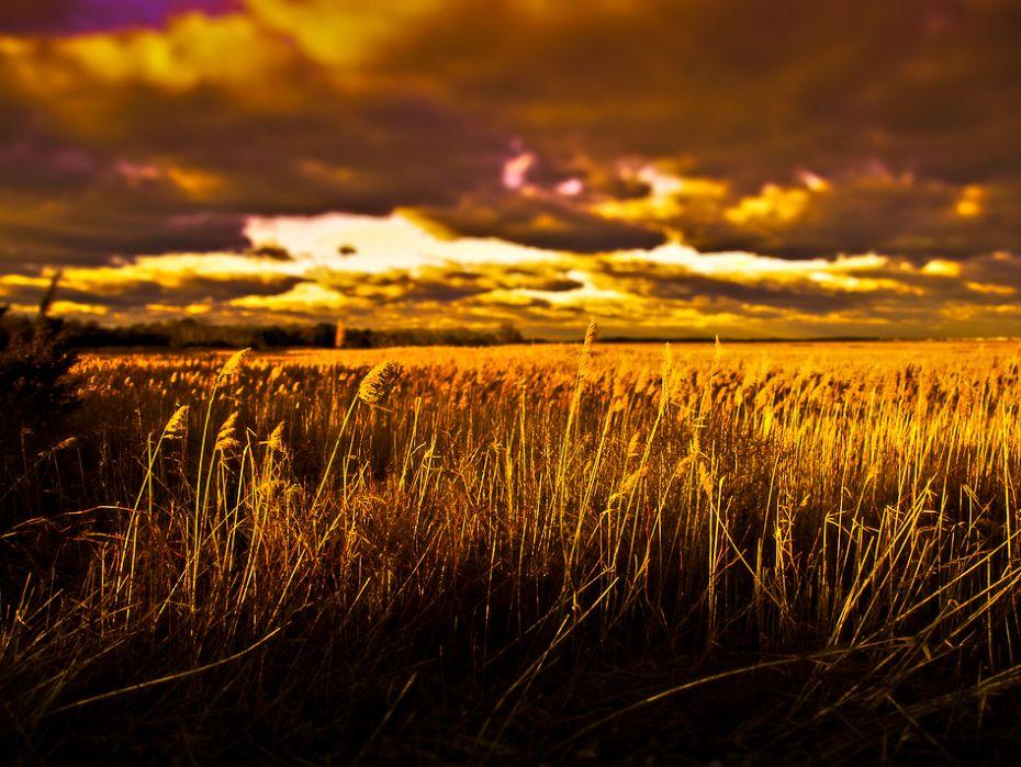 Barnstable Great Marsh HDR